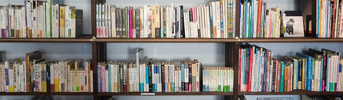 Biblioteca comunale Novazzano